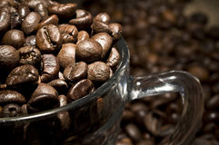 Coffee beans in glass cup Stock Images