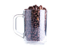 Coffee beans in a glass cup isolated on white background Royalty Free Stock Image