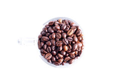 Coffee beans in a glass dish on a top view of the isolated white Stock Image