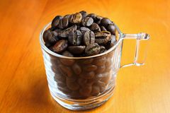 Coffee beans in the glass Royalty Free Stock Photos