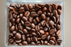 Coffee beans glass Royalty Free Stock Image