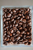 Coffee beans glass Royalty Free Stock Photography
