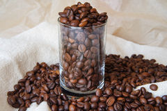 Coffee beans in a glass. Coffee beans in a transparent glass Stock Image