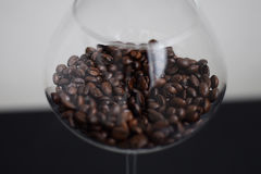 Coffee beans in glass. Coffee beans in wine glass on black and white background Royalty Free Stock Image