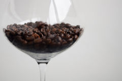 Coffee beans in glass. Coffee beans in wine glass on white background Royalty Free Stock Photo