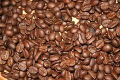 Coffee Beans. On a gold coloured table, Roatan, Honduras stock image