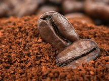 Coffee Beans and Granulated Instant Coffee Stock Photos