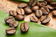 Coffee beans on a green leaf Royalty Free Stock Photography