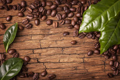 Coffee beans and green leaves Stock Photo