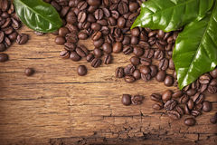 Coffee beans and green leaves Royalty Free Stock Photos