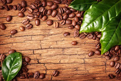 Coffee beans and green leaves Stock Images
