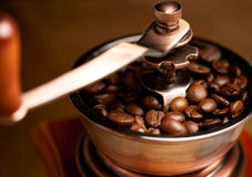 Coffee beans in grinder Royalty Free Stock Images
