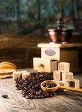 Coffee beans with grinder Stock Images