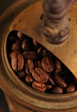 Coffee beans in the grinder Royalty Free Stock Photo