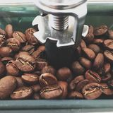 Coffee beans in a grinder Royalty Free Stock Image