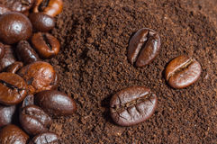 Coffee beans and ground coffee background Stock Image