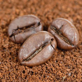 Coffee Beans on Ground Coffee Close-Up Royalty Free Stock Photos