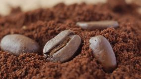 Coffee beans on ground coffee. stock footage