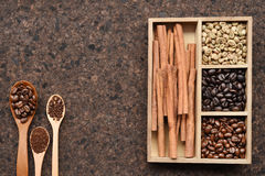 Coffee beans with ground coffee in wooden spoon and cinnamon Stock Image