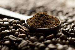 Coffee beans and ground with spoon Royalty Free Stock Photography