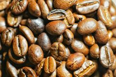 Coffee beans. Group of Coffee beans Stock Photography