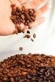 Coffee Beans and Hand Stock Image