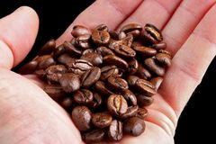 Coffee beans in hand Royalty Free Stock Photos