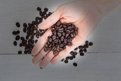 Coffee beans in hand Stock Photography