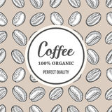Coffee beans Hand hand drawn botany vector banner illustration.. Organic Coffee Decorative doodle of caffeine food. Engraving sketch etch line. Black on beige Stock Images