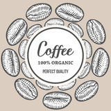 Coffee beans Hand hand drawn botany vector banner illustration.. Organic Coffee Decorative doodle of caffeine food. Engraving sketch etch line. Black on beige Stock Photos