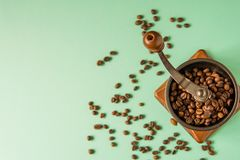 Coffee beans in a hand-held coffee grinder on a tender green bac Royalty Free Stock Photo