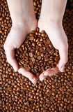 Coffee beans in hand Royalty Free Stock Image