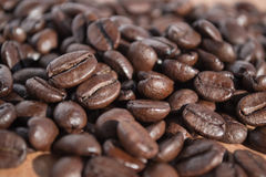 Coffee beans. A handful of stock photography