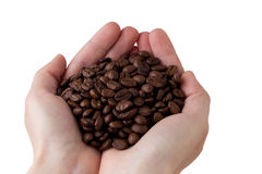 The coffee beans in a hands royalty free stock photography