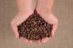 Coffee beans in the hands Stock Image