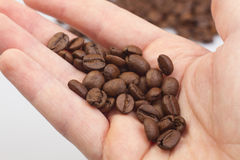 Coffee beans on the hands Royalty Free Stock Photography