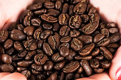 Coffee beans in hands Stock Photography