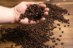 Coffee beans in hands on wooden background royalty free stock photos