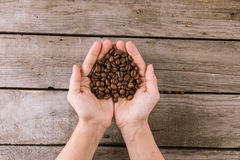 Coffee beans in hands on wooden tabletop Stock Image
