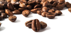 Coffee beans. Heap of coffee beans isolated on white Stock Images