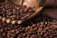 Coffee beans, heart, caffee. Coffee beans in handsa,  wooden table, brown, warm, shallow, detail Stock Photo