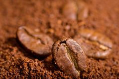 Coffee beans in the heat of the grounded coffee Royalty Free Stock Photo