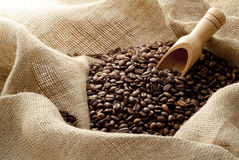 Coffee beans in hemp sack Stock Images