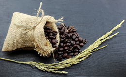 Coffee beans in hemp sack bag  on wood background Stock Image