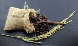 Coffee beans and hemp sack bag  on wood background Royalty Free Stock Image