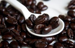 Coffee Beans In A Spoon . Stock Photo