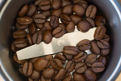 Coffee beans inside coffee grinder Stock Photography