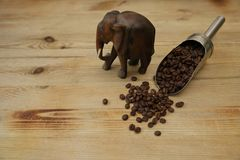 Coffee beans in an iron spoon and elephant on wooden background. With copy space for text royalty free stock photo