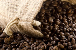 coffee beans in a jute bag Royalty Free Stock Image