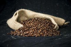 Coffee beans in a jute bag Stock Image